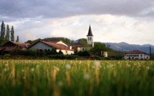Un paysage bucolique de la Dombes